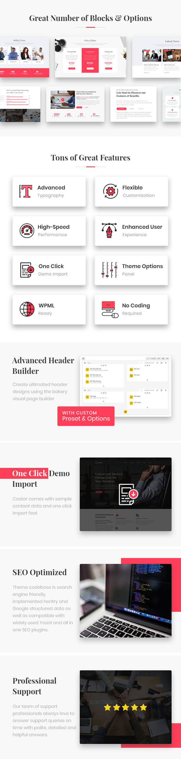Castor - Business Consulting WordPress Theme - 4