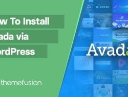 How To Install Avada via WordPress