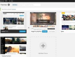 How to Install a WordPress Theme – MyThemeShop