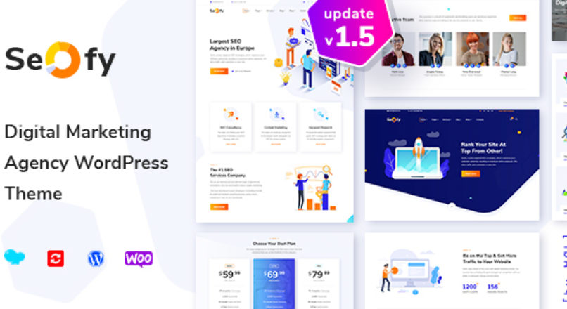 Seofy – Digital & Marketing WordPress Theme