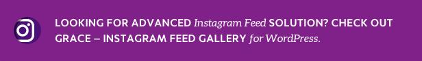 Grace Instagram Feed Gallery for WordPress info