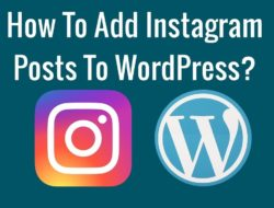How To Add Instagram Posts To WordPress?