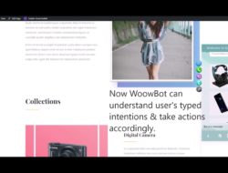 How to add artificial intelligence natural language processing (NLP) to WordPress chatbot WoowBot