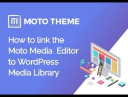 How to link the Media Editor Library to WordPress Media Library