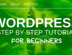 WordPress Tutorial For Beginners 2019 – Create A Website Step by Step – Video Tutorial