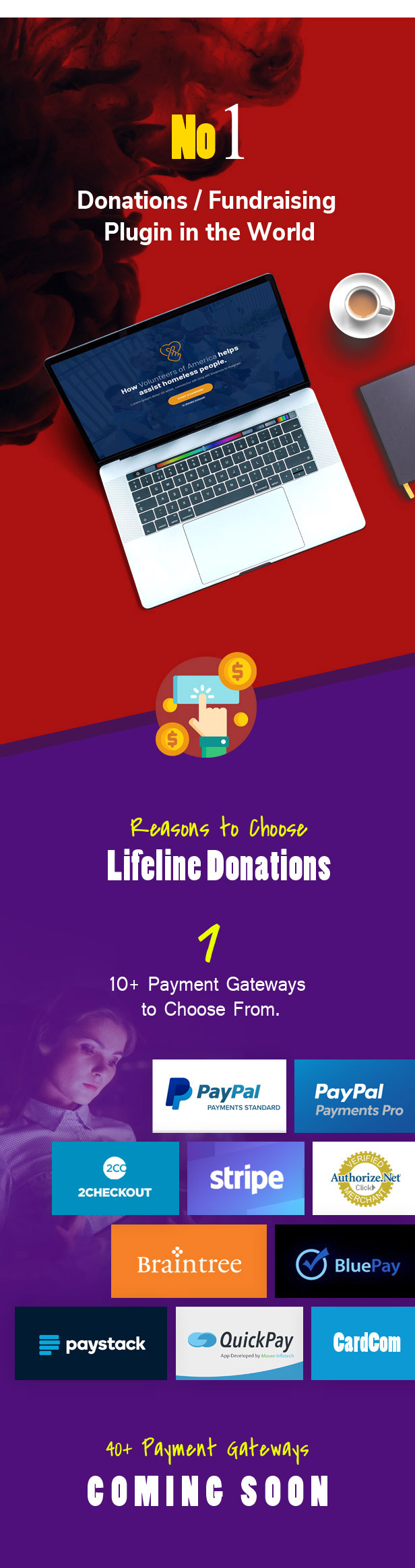 Lifeline Donations - Multidimensional WordPress Donations Plugin - 1