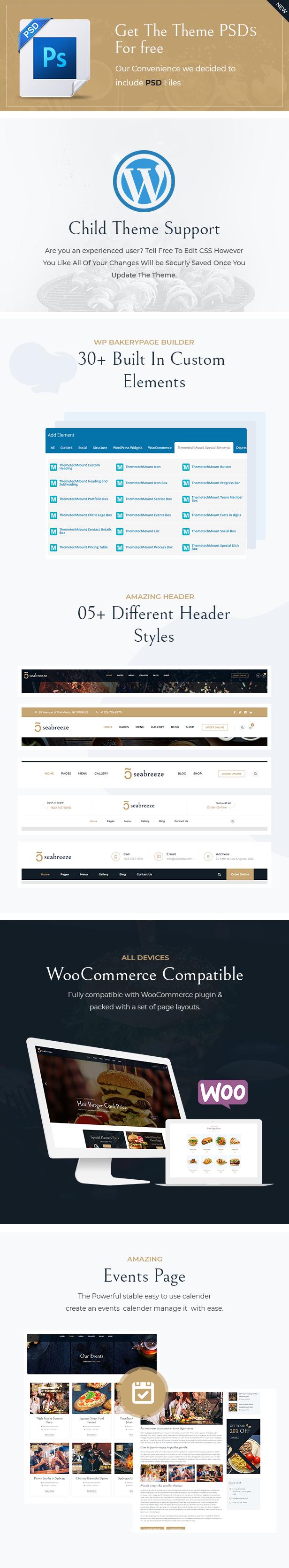 SeaBreeze WordPress Theme